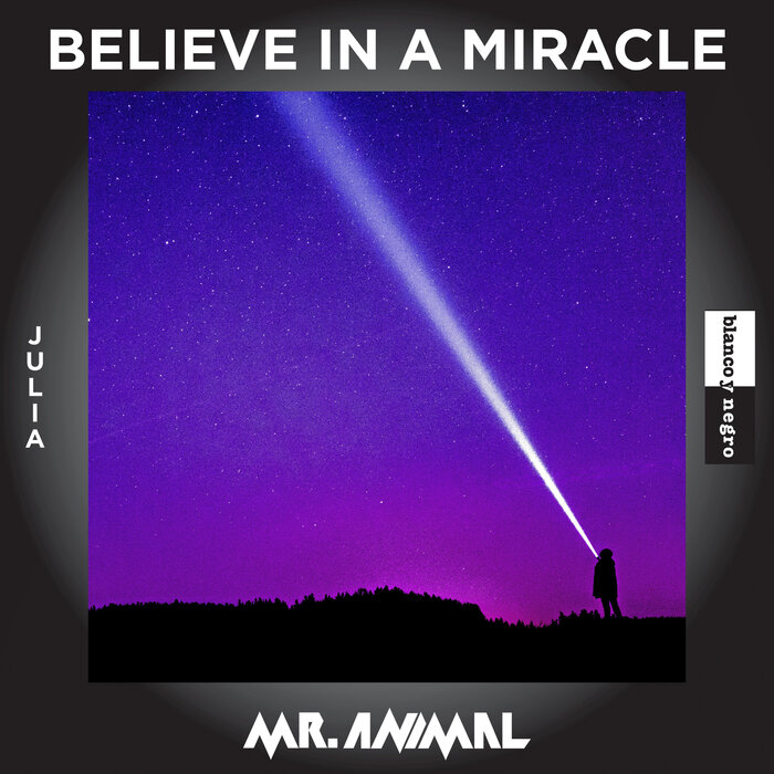 Mr. Animal feat. Julia - Believe In A Miracle